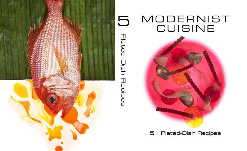 modernist-cuisine-plated-dish-recipes