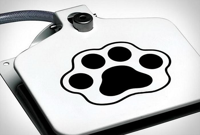 Doggy Water Fountain, Water Dispenser for Dogs.