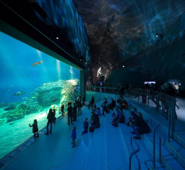 The Blue Planet Aquarium: Α vortex to an underwater world.