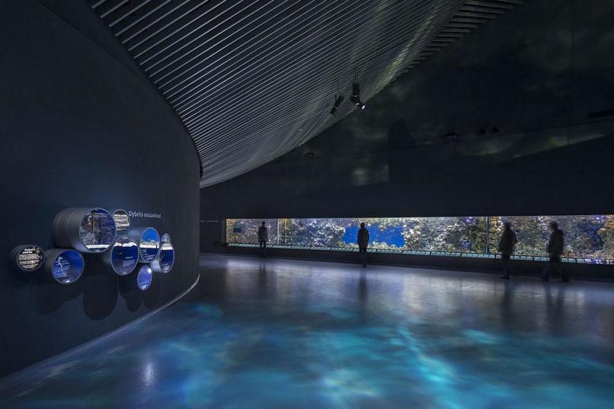 Ενυδρείο The Blue Planet: δίνη προς έναν υποβρύχιο κόσμο.