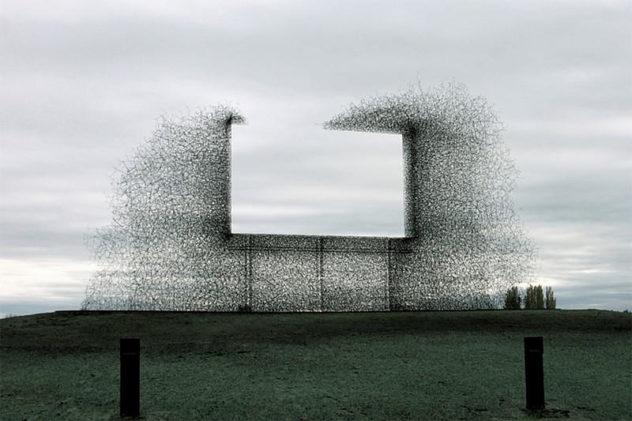 Non-Billboard by Lead Pencil Studio
