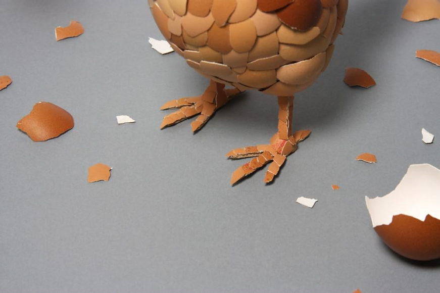 Η κότα που φτιάχτηκε από αυγά του Kyle Bean.