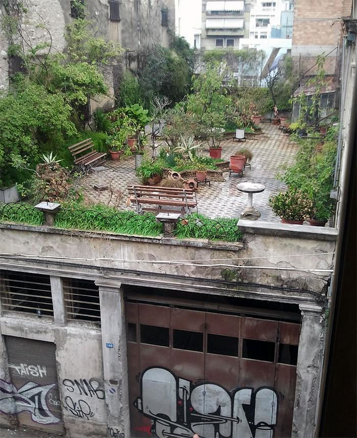 A Secret Roof Garden on Top of an Abandoned Building in Patras, Greece.