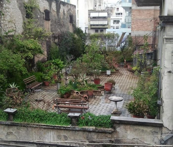 Roof top garden on abandoned building Patras Greece