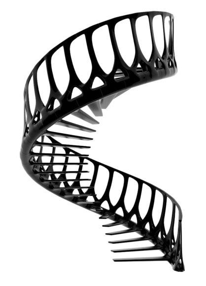 Εσωτερική σκάλα Vertebrae του Andrew McConnell.
