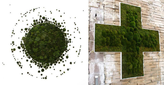 Anna Garforth Moss Art