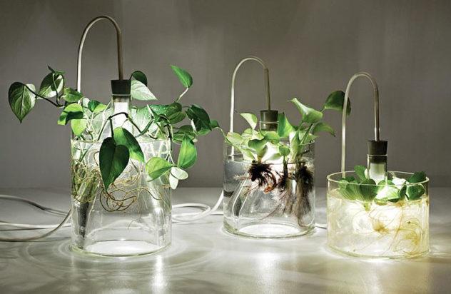 Vase & Leuchte by Miriam Aust
