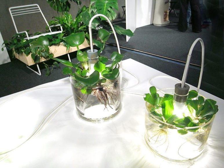 Vase & Leuchte από την Miriam Aust.