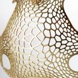 Μενταγιόν Haeckel (Μπρούτζος) - Nervous System