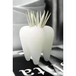 Θήκη για οδοντογλυφίδες PICK A TOOTH
