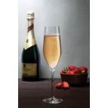 Ποτήρια Σαμπάνιας Vinifera 255 ml Σετ των 6 Nude Glass