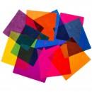 After Matisse Rug - Sonya Winner Studio