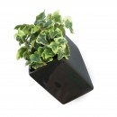 Off the Wall Pot Large (Black) - Thelermont Hupton