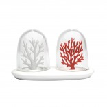 Coral Bleaching Salt & Pepper Shakers (Set of 2) - Qualy