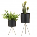 Pedestal Plant Pot Set of 2 (Black) - Present Time