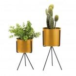 Pedestal Plant Pot Set of 2 (Ochre Yellow) - Present Time