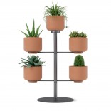 Terrapotta Tabletop Planter (Terracotta / Titanium) - Umbra