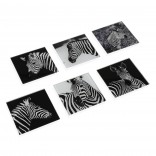 Zebra Square Glass Coasters (Set of 6) - Versa