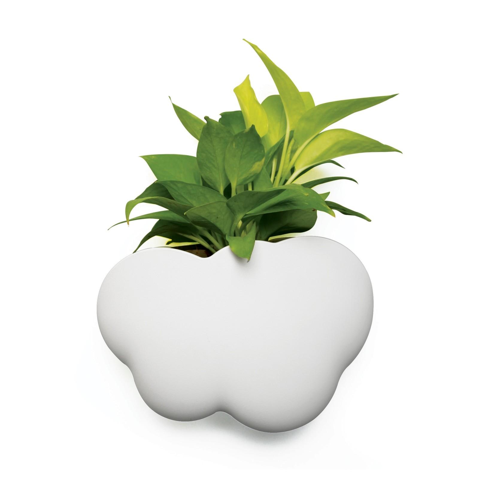 Cloud Pot (Plant Pot / Container) - Qualy