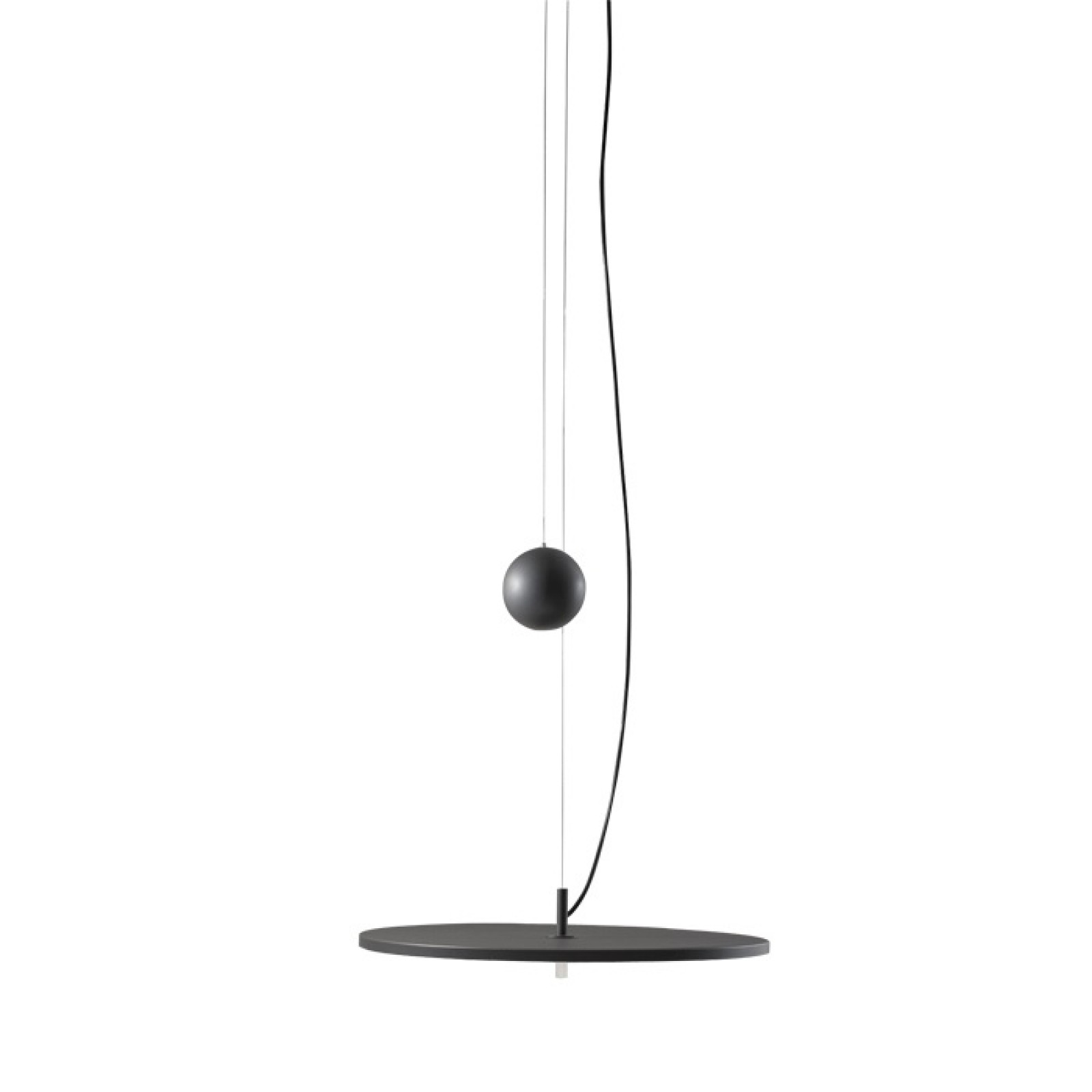 BlancoWhite D1 / D2 Ceiling - Hanging LED Lamp - Santa & Cole