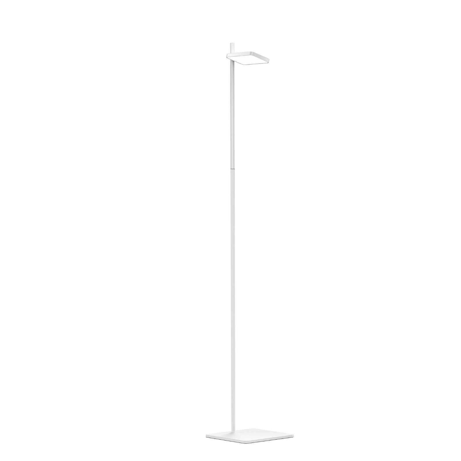 TALIA LED Floor Lamp (White) - Pablo Designs