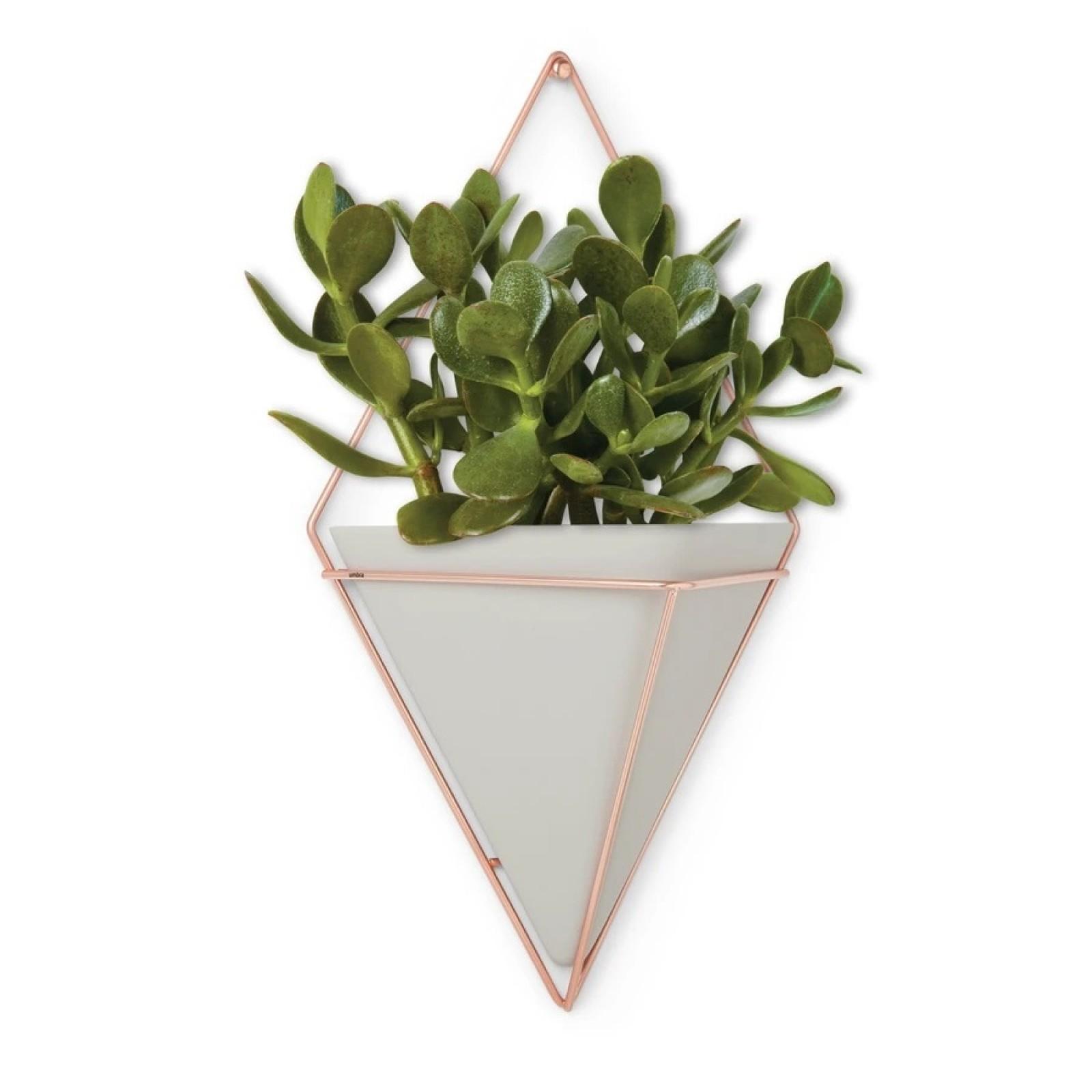 Trigg Large Hanging Wall Planter & Vase (Concrete / Copper) - Umbra