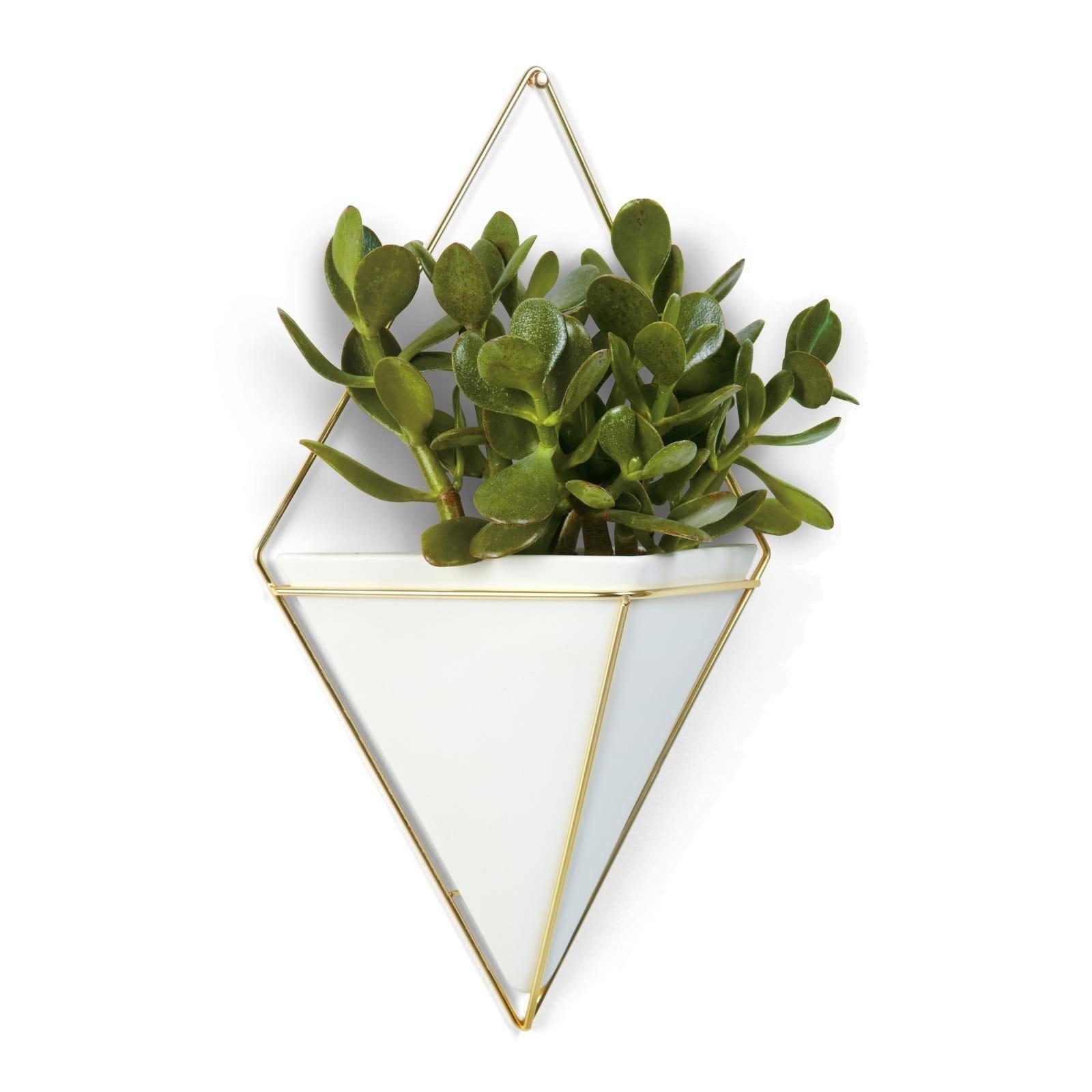 Trigg Large Hanging Wall Planter & Vase (White / Brass) - Umbra