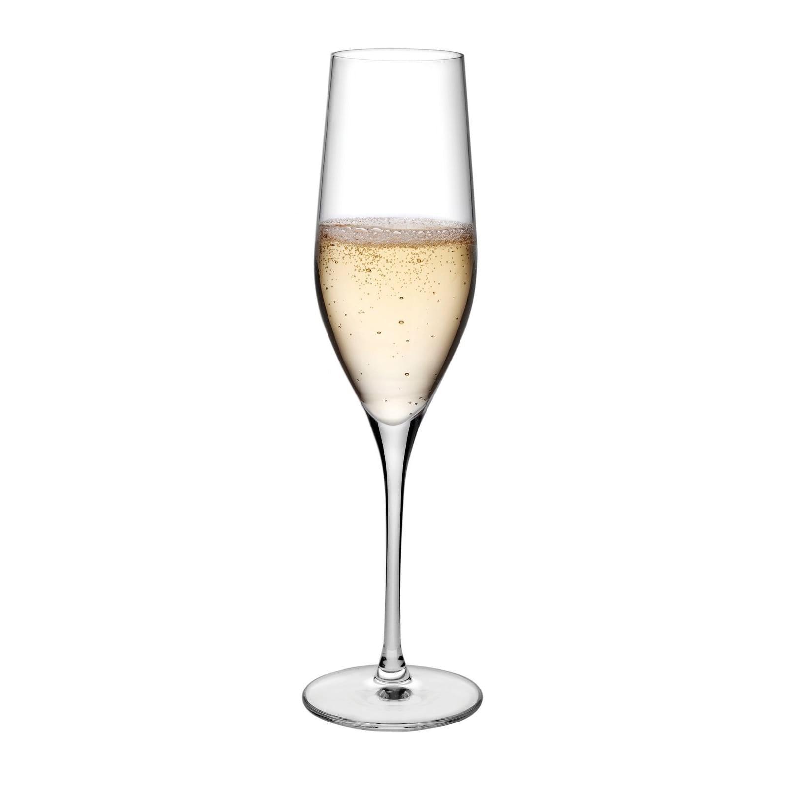 Vinifera Champagne Glasses 255 ml (Set of 6) - Nude Glass