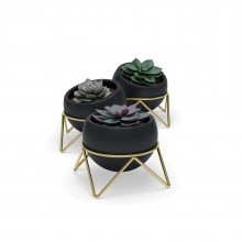 POTSY Planter Set of 3 (Black/ Brass) - Umbra