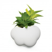 Cloud Pot (Plant Pot / Container) - Qualy