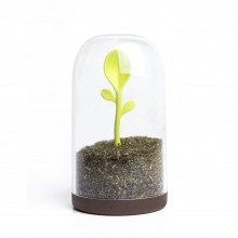 Sprout Jar (Container & Spoon) - Qualy