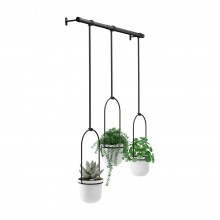 Triflora Hanging Planter (White / Black) - Umbra