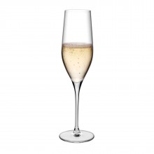 Vinifera Champagne Glasses 255 ml (Set of 6) - Nude Glass
