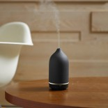 Casa Aroma Genie Ultrasonic Essential Oil Diffuser (Black) - Toast Living