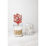 Coral Container (Clear-Red) - Qualy