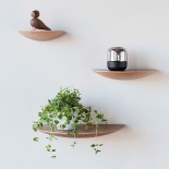 Gridy Fungi Shelf Small (Natural Oak) - Menu