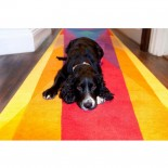 Rainbow Runner Rug - Sonya Winner Studio