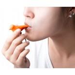 Sparrow Keyring & Whistle (Orange) - Qualy