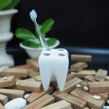 WHITE TOOTH Toothbrush Holder