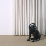 Woofers Speakers - Sander Mulder
