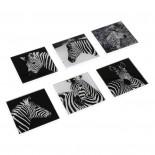 Zebra Square Glass Coasters (Set of 6) - Versa